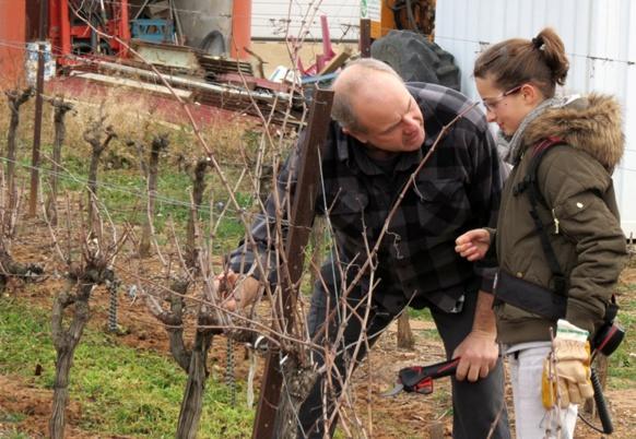 Lunettes et protection...Frédéric ne néglige pas les règles de sécurité dans ses explications du métier de vigneron (photo MN)
