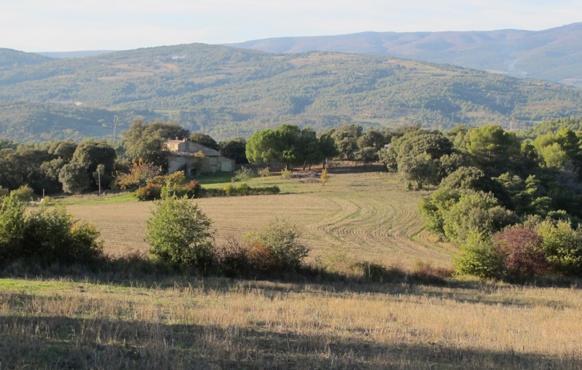 Territoires identifiés comme enjeux forts pour la biodiversité provençale, les piémont collinaires occupés à la fois par l'agriculture et par la nature (photo MN)