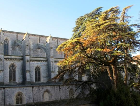 Sainte-Baume, un patrimoine matériel évident, mais quid de l'immatériel ? doit-il être effacé dès que les associations baissent la garde ? (photo MN)
