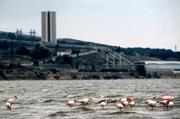 Mis en cause par l'Etang Nouveau, les rejets d'eau douce d'EDF à partir de cette centrale à Saint-Chamas (photo MN)