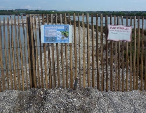 Apparemment le consensus n'était pas tout à fait atteint sur ce lieu de passage où les chiens pouvaient causer des dégâts (photo