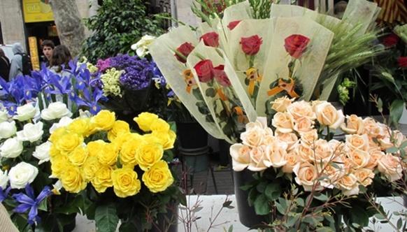 La fleur coupée est la spécialité varoise mais l'activité est contrariée par la difficulté de trouver du foncier (photo MN)