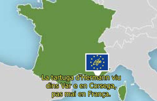 La tartuga ditz son aparament en occitan