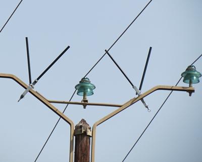 Les bougies en place, les rapaces seront dissuadés de se poser et empêchés de s'électrocuter (photo MN)