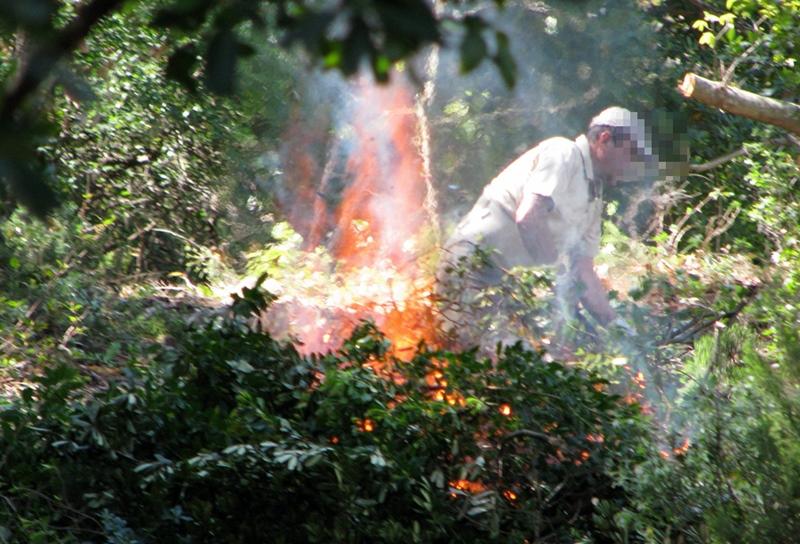 Brûlage forestier dans le massif des Maures. Une pratique très réglementée, néanmoins chacun fait un peu comme il veut... (photo MN)