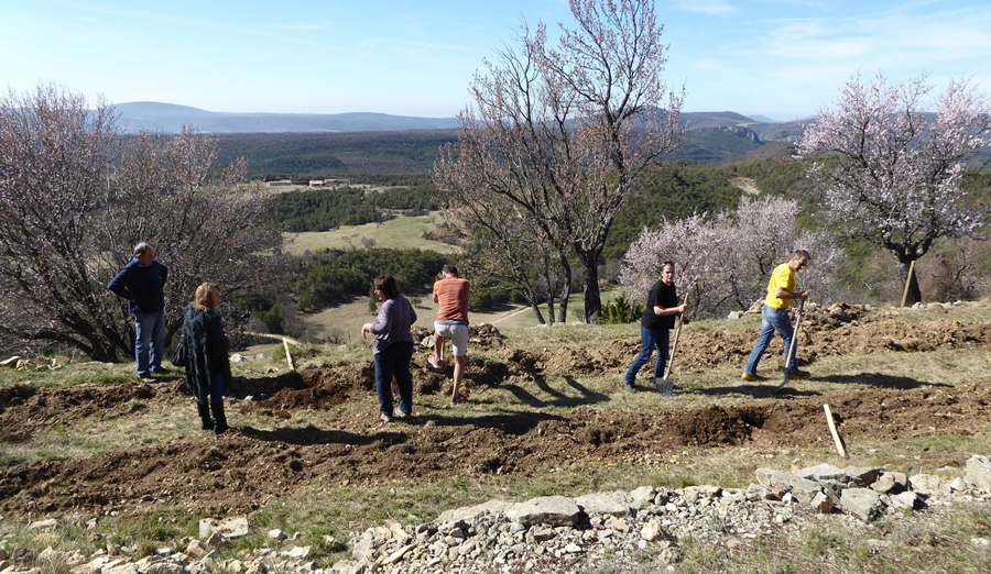 Apprendre ensemble à planter, greffer, entretenir, un gage de la conservation de variétés anciennes fruitières (photo PNR Verdon DR)