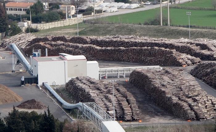 Bòscs dau Bresiu a Gardana, pèr leis assais d'Uniper en 2016 (photo MN)