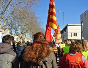 """La plupart des professeurs d'occitan langue d'oc avaient choisi de """"faire poids"""" à Avignon pour la grève nationale de mardi (photo XDR)"""