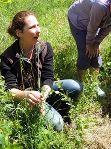 Avec Florence Faure-Brac, jardins et collines deviennent la pharmacie des femmes (Photo FFB DR)