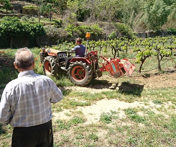"""""""Le cheval lui ne parlait pas français"""" : propos d'un vieux paysan de la Drôme (Photo MN)"""