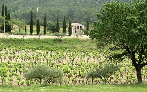 """Territoires de projets à échelle humaine et souvent ruraux, les Pays font du """"hors piste"""" européenne et la création des Métropole pourrait les marginaliser encore plus. Ici Correns (83) village dédié à la viticulture biologique et à la création musicale (photo MN)"""