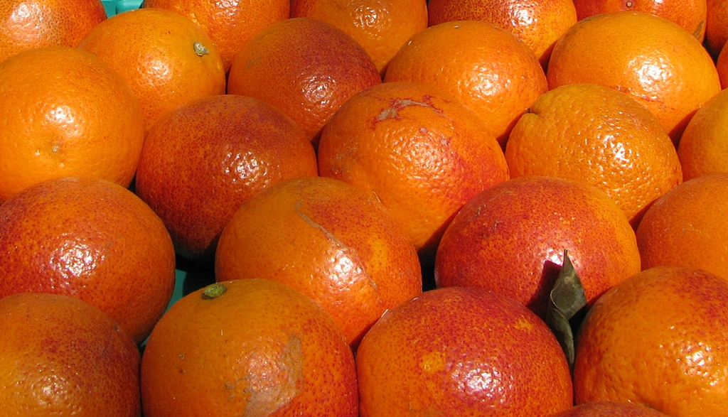 Tout ce qui est orange et se mange doit protéger la macula (photo MN)