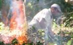 Pollucien silenciosa lo bòsc cremat a la premiera plaça