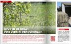 Accents dobla la susfàcia editoriala dau provençau e escafa la grafia classica