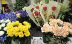 De flors « made in Var » per resistir au declin