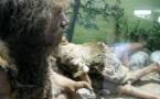 Nòstreis alergiás serián neandertalencas